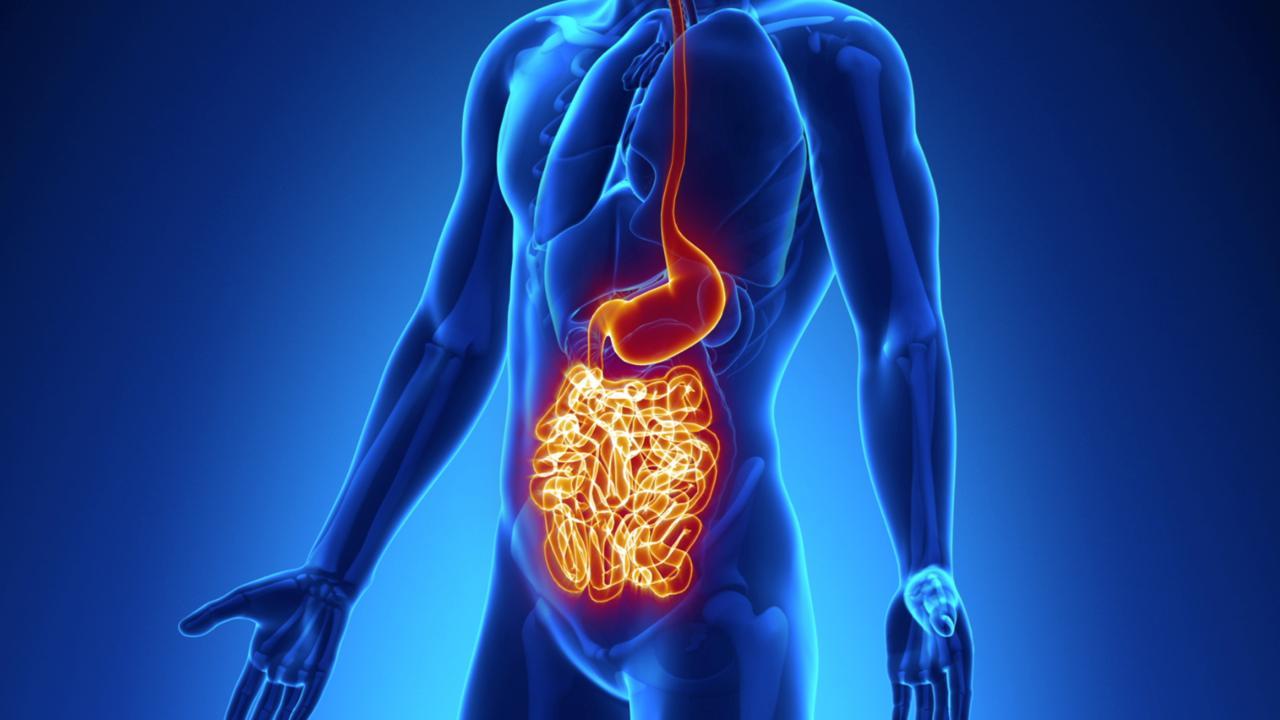 Η νόσος του Crohn και τα συμπτώματα που πρέπει να προσέξουμε
